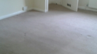 Yeading cleaning carpets