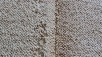 Keston cleaning carpets