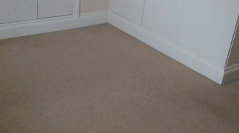 Belgravia cleaning carpets