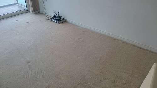 Addington cleaning carpets