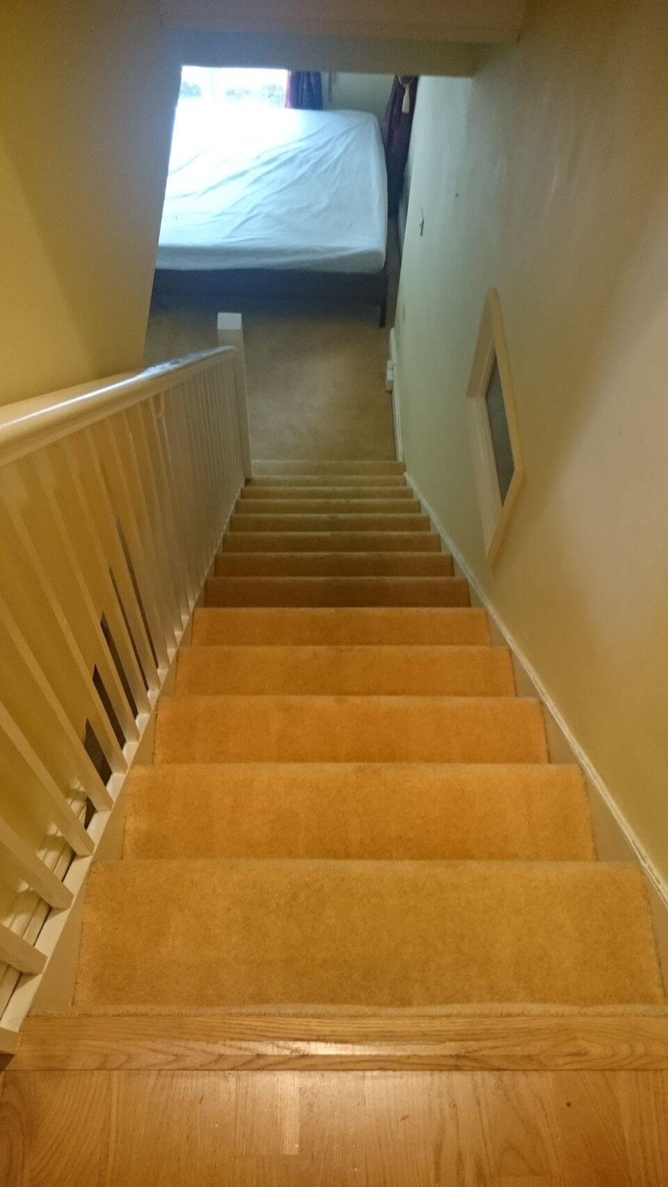 Anerley cleaning carpets