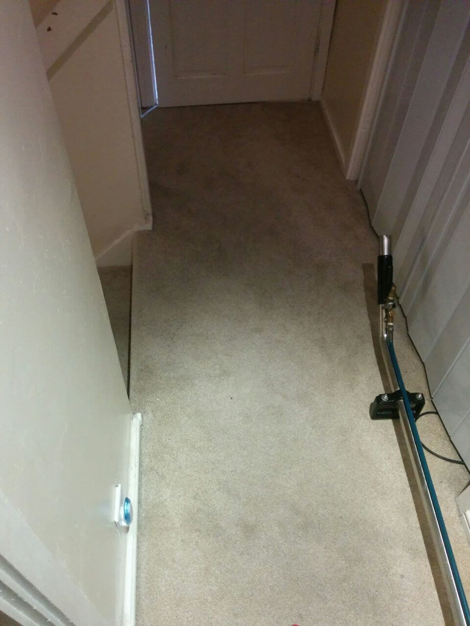 Anerley clean carpet