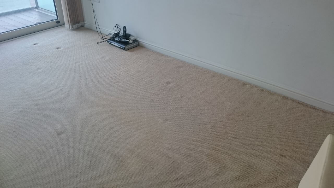 Battersea cleaning carpets