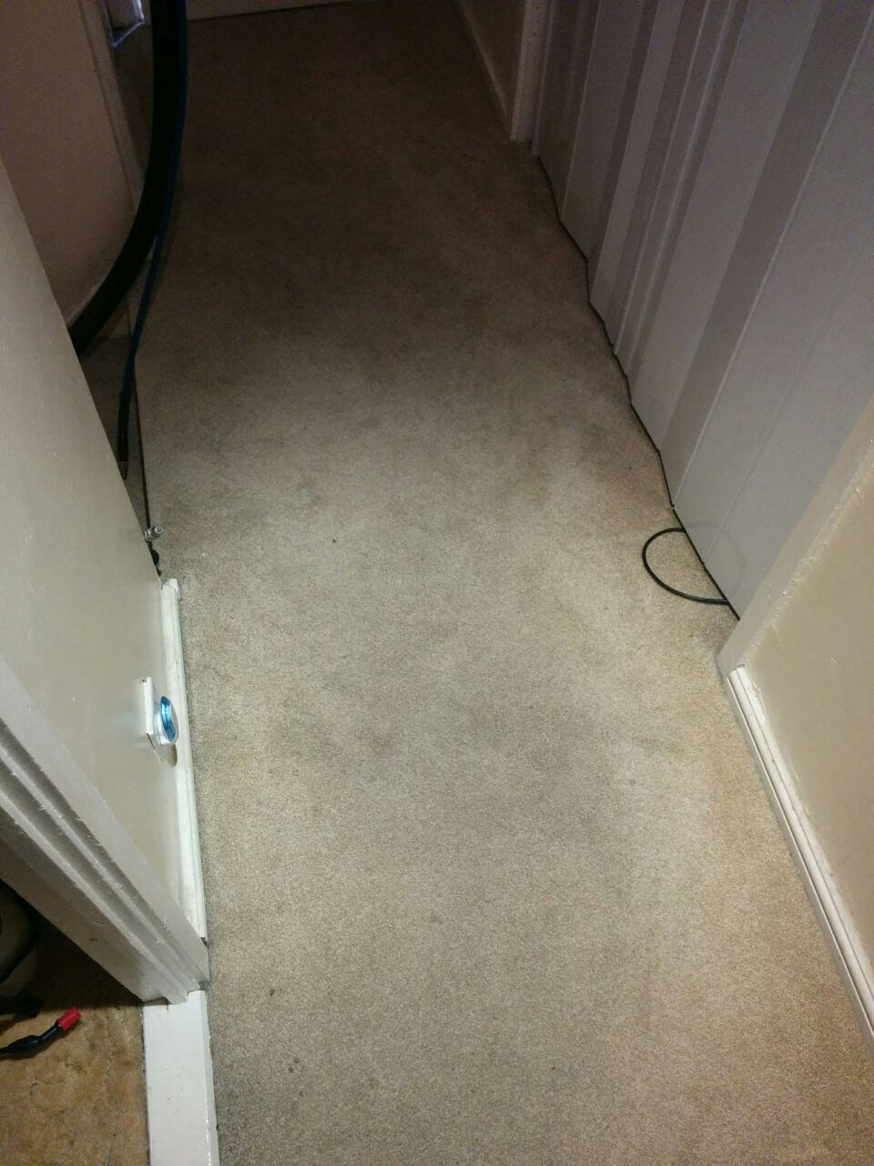 Earls Court cleaning carpets