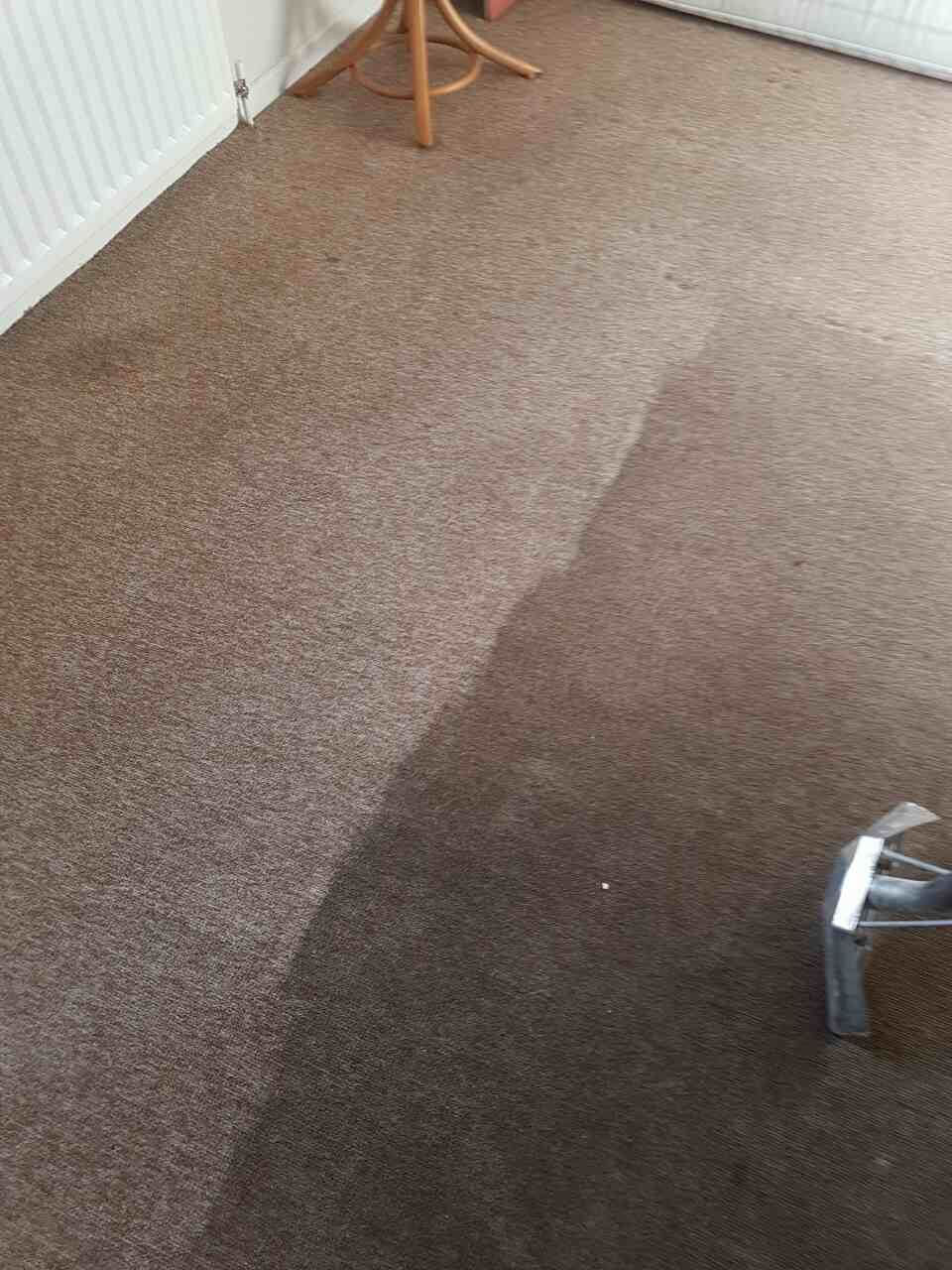 Elmers End clean carpet