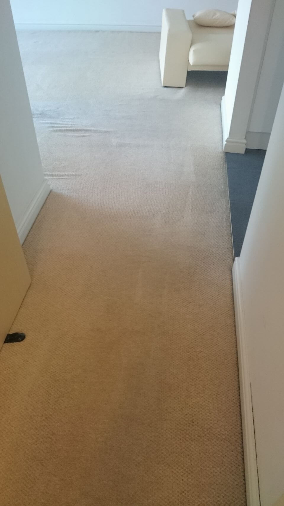 N3 carpet cleaning Finchley