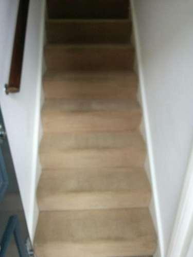 carpet cleaning Kentish Town