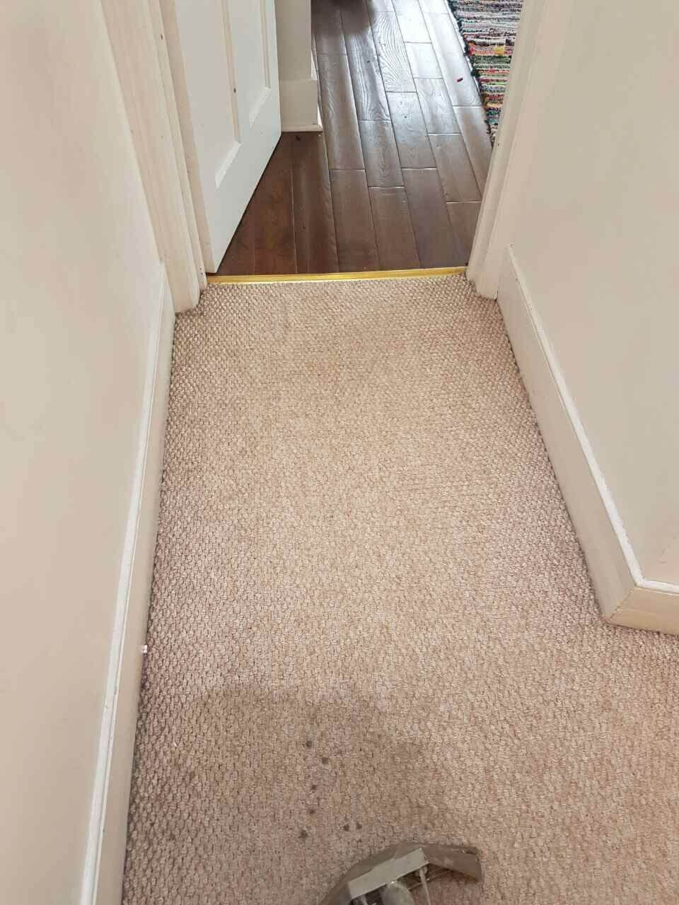 E1 carpet cleaning Shadwell