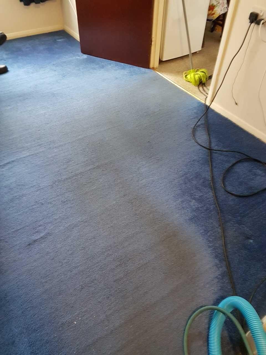 Twickenham domestic cleaner