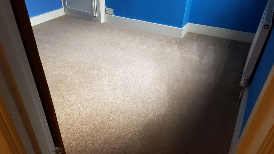 SE17 carpet cleaning Walworth