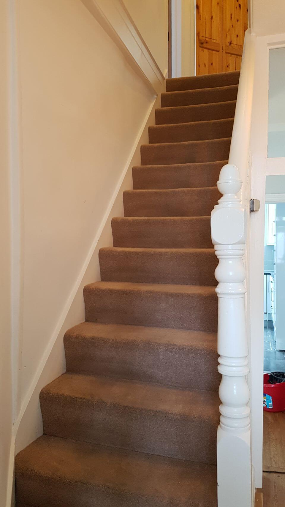 Wandsworth cleaning carpets