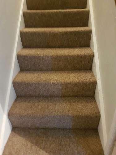 carpet cleaning West Kensington