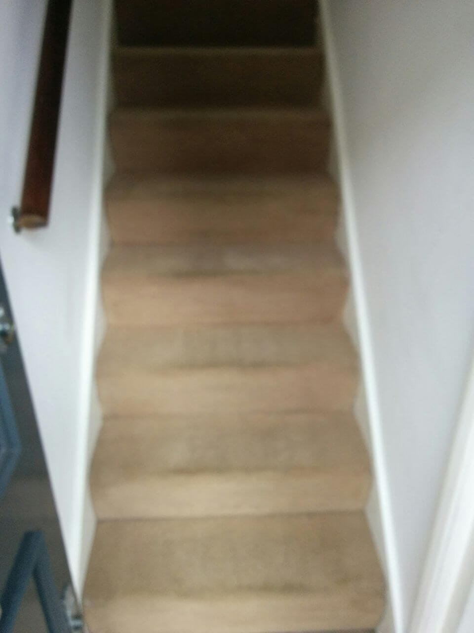 Wood Green cleaning carpets